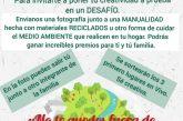 TALLER DE MANUALIDADES Y MEDIO AMBIENTE